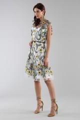 Drexcode - Floral pattern short dress - ML - Monique Lhuillier - Rent - 2
